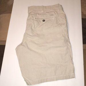 """Izod 9"""" Seersucker Shorts 34"""